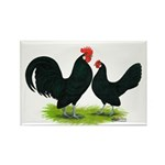 Black Dutch Pair Rectangle Magnet (100 pack)
