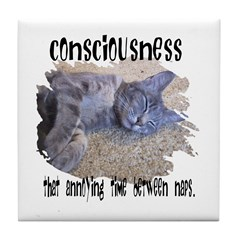 Consciousness Is Tile Coaster