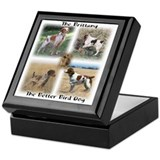 The Brittany The Better Bird Dog Keepsake Box