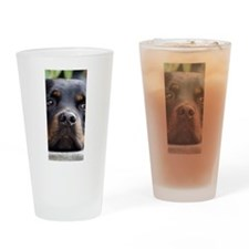 Rottweiler dog Drinking Glass