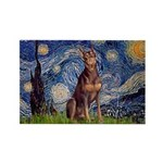 Starry / Red Doberman Rectangle Magnet (10 pack)