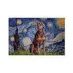 Starry / Red Doberman Rectangle Magnet (10 pack)
