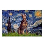 Starry / Red Doberman Postcards (Package of 8)