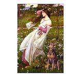 Windflowers / Dobie (#8) Postcards (Package of 8)