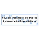 Your Car Bracco Italiano Bumper Car Sticker
