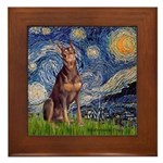 Starry / Red Doberman Framed Tile