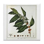 Coffee Botanical Print Tile Coaster