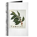 Coffee Botanical Print Journal