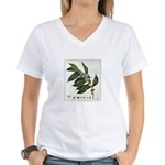 Coffee Botanical Print Women's V-Neck T-Shirt