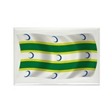 Turkmen Flag Rectangle Magnet (100 pack)