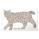 Pixie-Bob (color) Rectangle Decal