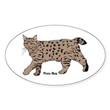 Pixie-Bob (color) Oval Decal