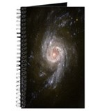 NGC 3310 Starburst Galaxy Journal