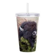 Christmas Bison Acrylic Double-wall Tumbler