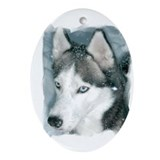 Cute Husky Oval Ornament