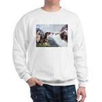 Creation / 2 Dobies Sweatshirt