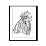 Plymouth Rock Rooster Framed Panel Print