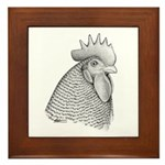 Plymouth Rock Rooster Framed Tile