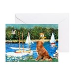 Sailboats / Nova Scotia Greeting Cards (Pk of 10)