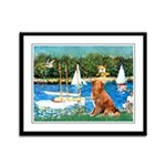 Sailboats / Nova Scotia Framed Panel Print