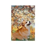 Spring / Corgi Rectangle Magnet (10 pack)