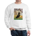 Spring / Rottweiler Sweatshirt