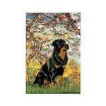 Spring / Rottweiler Rectangle Magnet