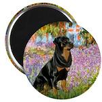 Garden / Rottweiler 2.25