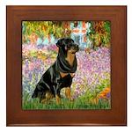 Garden / Rottweiler Framed Tile