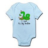 I Love My Big Brother Baby/toddler bodysuits