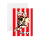 Reindog Greeting Cards (Pk of 10)