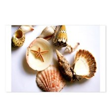 Cute Seashells Postcards (Package of 8)