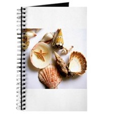 Cute Seashells Journal