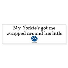 Wrapped Around His Paw (Yorkie) Bumper Car Sticker