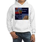 Dramatic Look Hooded Sweatshirt