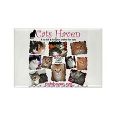 Cats Haven Design 2 Rectangle Magnet