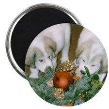 Great Pyrenees Xmas Puppies Magnet