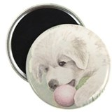 "Great Pyrenees Puppy 2.25"" Magnet (10 pack)"