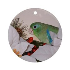 Male Spectacled Parrotlet Ornament