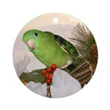 Green Lineolated Parakeet Ornament