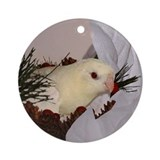 Creamino Lineolated Parakeet Ornament