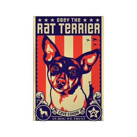 Obey the Rat Terrier! Magnets (10 pack)