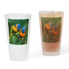 Birds, Love, Colorful Drinking Glass