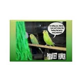 """Parakeet Humor #3"" Rectangle Magnet (100 pack)"