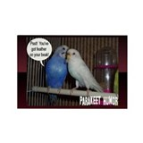"""Parakeet Humor #4"" Rectangle Magnet (10 pack)"