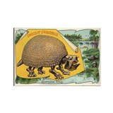 Glyptodon Typus Rectangle Magnet