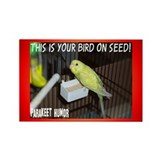 """Parakeet Humor #8"" Rectangle Magnet (10 pack)"