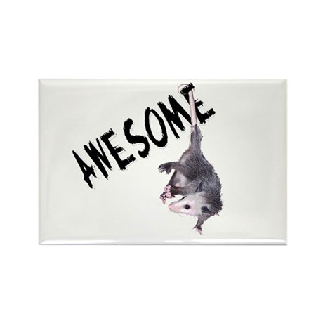 Awesome Possum Rectangle Magnet (10 pack)