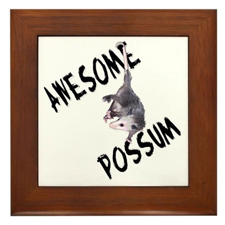 Awesome Possum Framed Tile
