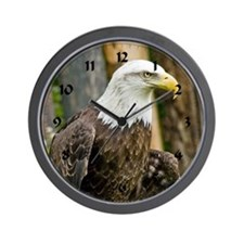 Bald Eagle Looking Wall Clock